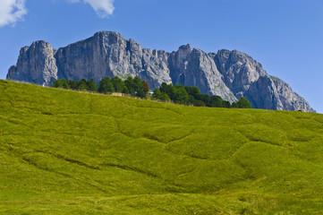 Dolomites, the mount Stevia - Italy