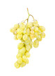 White grapes gsolated on white background