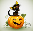 Cute black cat pumpkin.