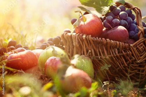 Fotobehang Vruchten Organic fruit in summer grass