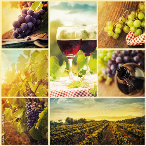 Plakat Kraj wina kolaż