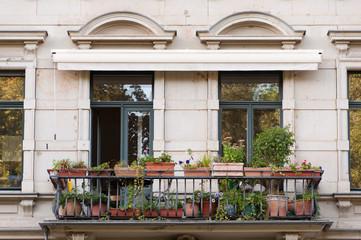 Balkon mit verschiedenen Pflanzen