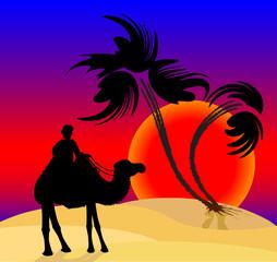 Silhouette illustration of a cameleer in the desert