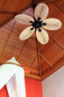 Asian styled room with Palm Leaf-Shaped Ceiling Fan Blade