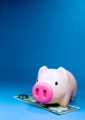 piggy bank,blue background