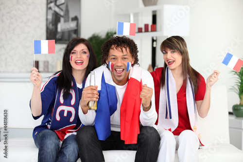 French fans at home