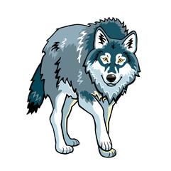 standing grey wolf