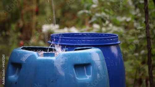 Rain Water Collecting in Blue Barrels
