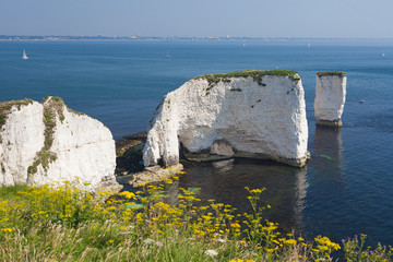Old Harry Rocks and Bournemouth