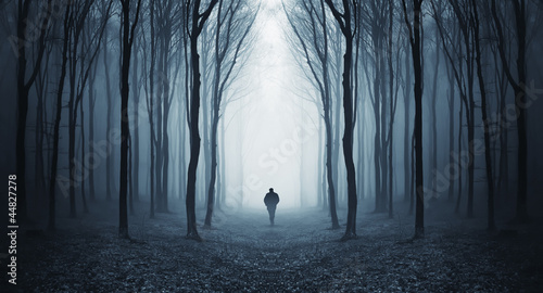 Poster Landschappen man in a dark forest