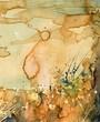 Quadro Artystyczne tło akwarelowe,