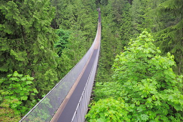 Capilano bridge. North Vancouver.
