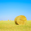 Hay roll, blue sky and yellow field in summer. Tuscany