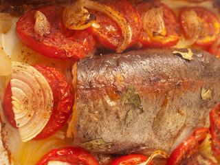 baked  trout with tomatoes and onion for Mediterranean recipe