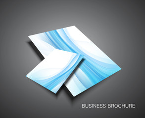 abstract Professional brochure design presentation Vector