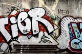 Grafitti auf einer Mauer - 44837629