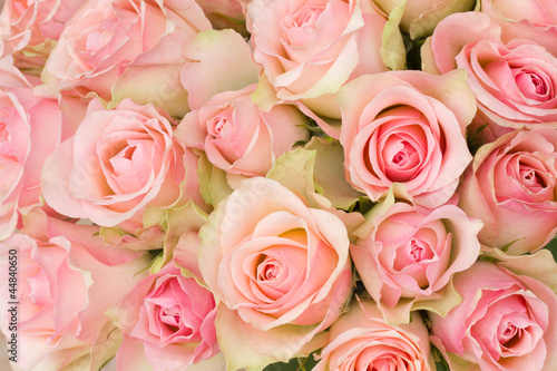 In de dag Rozen bouquet of pink roses