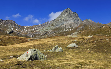 paysage alpin queyras