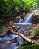 Waterfall in tropical forest. Mountain river, stones with moss a