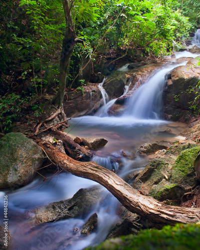Waterfall in tropical forest. Mountain river, stones with moss a - 44843236