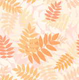 Fototapety Seamless pattern with autumn rowan leaves. Vector illustration.