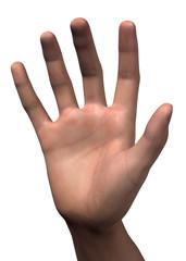 DITI NUMERO CINQUE - 3D