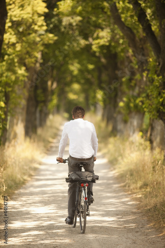 Rear view of young businessman riding along tree-lined road on bicycle
