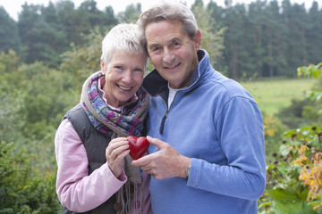 Portrait of smiling senior couple holding heart-shape ornament in garden
