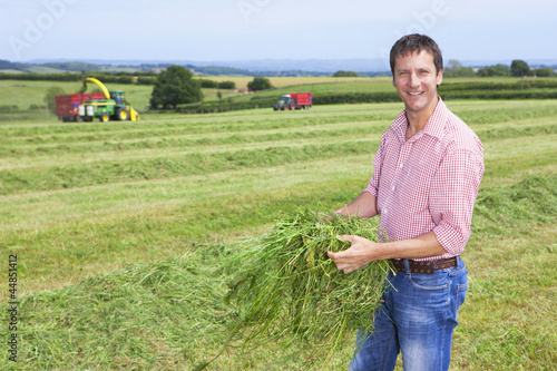 Portrait of smiling farmer holding green hay in field with tractors
