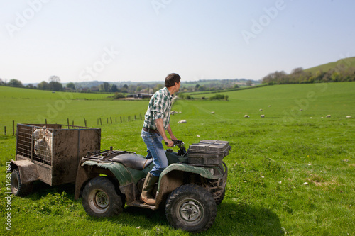 Shepherd on tractor looking over sheep in field
