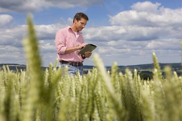 Farmer using digital tablet in young wheat field