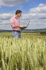 Farmer using laptop in young wheat field