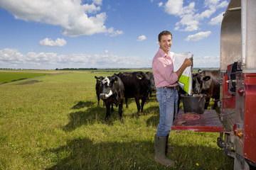 Portrait of farmer preparing feed for cattle on truck bed in sunny rural field