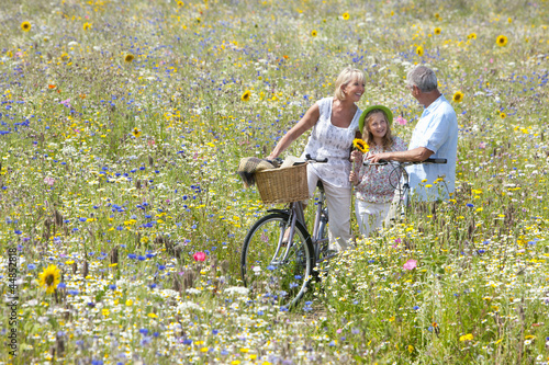 Senior couple standing with bicycles in field of wildflowers with granddaughter