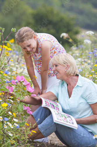 Grandmother and granddaughter on path looking at botany book in field of wildflowers