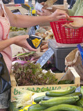 Woman holding coin purse buying vegetables from market
