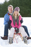 Portrait of smiling couple sitting on sled in snow