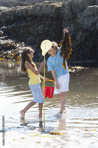 Boy and girl with fishing net and seaweed in tide pool