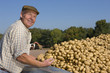 Portrait of smiling farmer inspecting potatoes from trailer in sunny, rural field