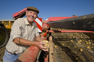 Smiling farmer holding potatoes above conveyor belt