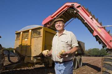 Farmer holding potatoes in sunny, rural field with machinery in background