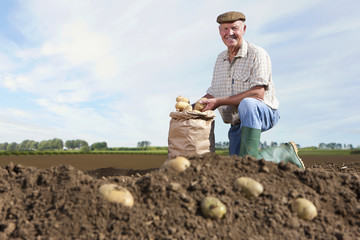 Portrait of smiling farmer kneeling next to sack of potatoes in sunny, rural field