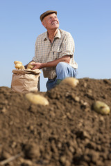 Farmer kneeling next to sack of potatoes in sunny, rural field