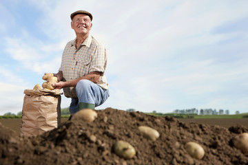 Smiling farmer kneeling next to sack of potatoes in rural field