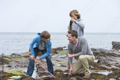 Father and sons playing with seaweed on rocks