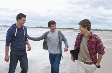 Teenage boys walking on beach
