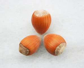 Hazelnuts,isolated