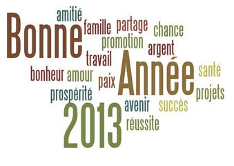 Nuage de Mot : Bonne Année 2013