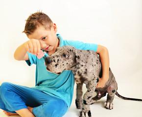 Junge mit Deutsche Dogge