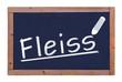Fleiss  #120912-006